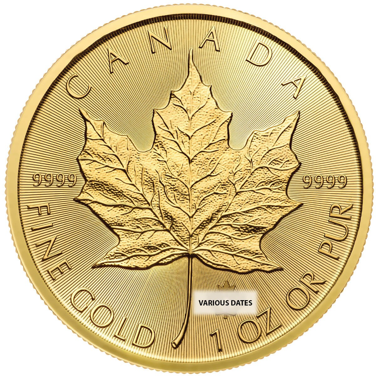 1 Ounce Gold Canadian Maple Leaf Back Dated