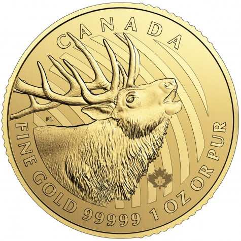 1 Ounce Gold Canadian Elk 2017